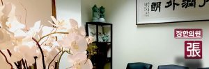 acupuncture office interior